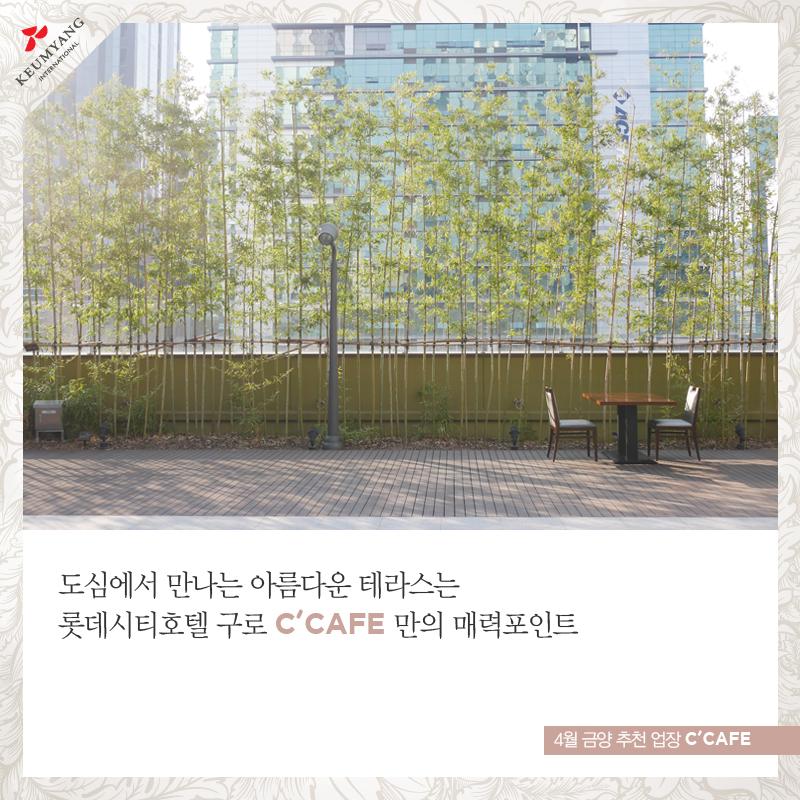 KY0408_4.jpg